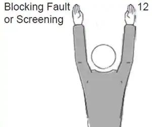 Blocking Fault or Screening