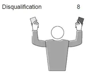 Disqualification