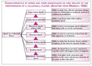 Characteristics of speed graph